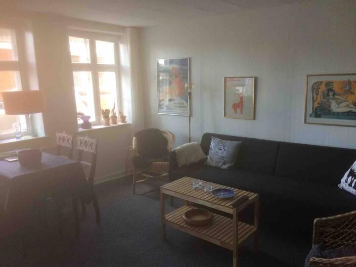 Fredet hus i Ribes  centrum dejlighave kan bruges