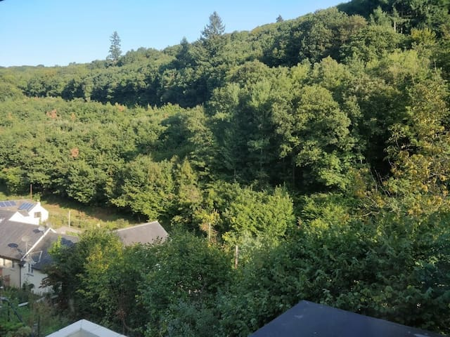Woodland Family Retreat in the Wye Valley