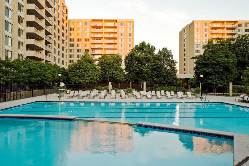 Full size pool