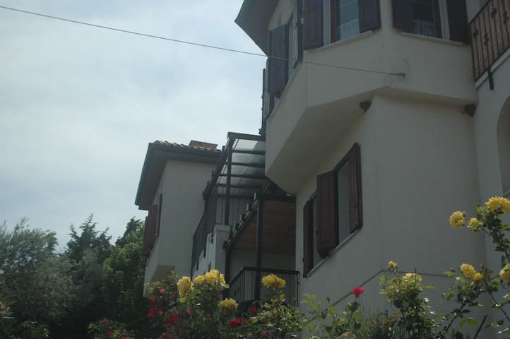 Villa Athina Pilion Apartment ELARA Potistika