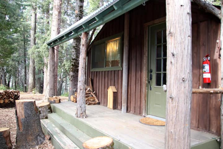 Cozy Little Cabin in the Woods