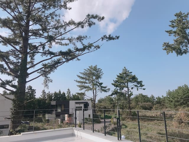 '소길숲속' 효리네 민박 옆집