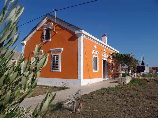Insel Premuda  Kroatien Ferienhaus - Zemunik Donji - Haus