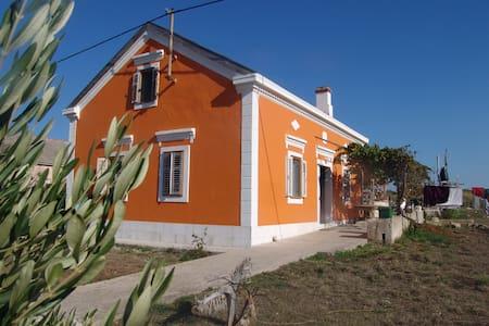 Insel Premuda  Kroatien Ferienhaus - Zemunik Donji - Casa