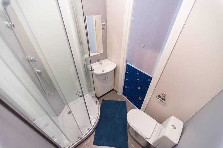 Spacious room in St. Petersburg