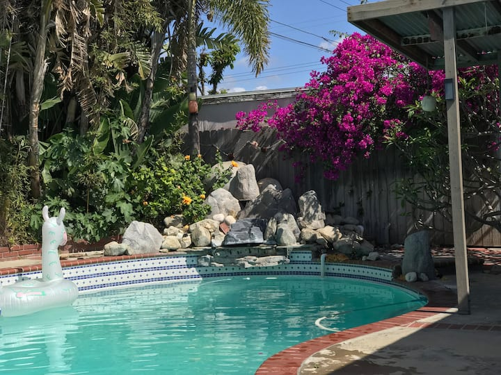 Sweet house, new remodle pool, spa, near beach 15
