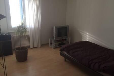 2 rooms apartment close to Lucerne - Kriens - Daire