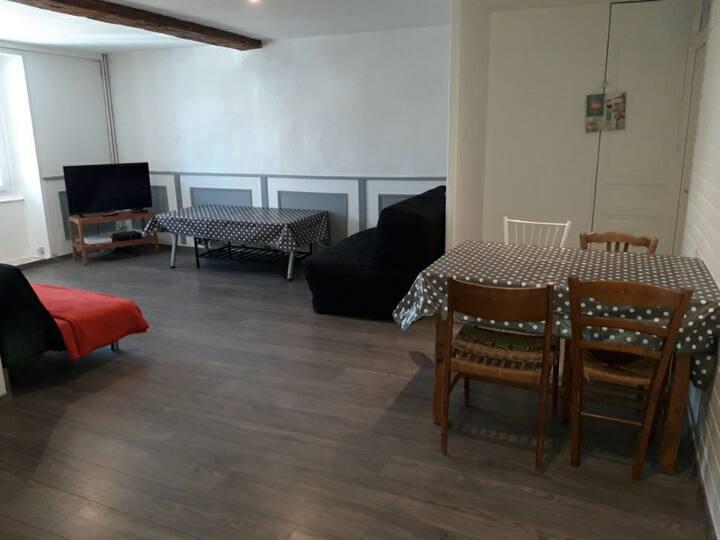 Appartement T3 60 M2 Chambéry hyper-centre