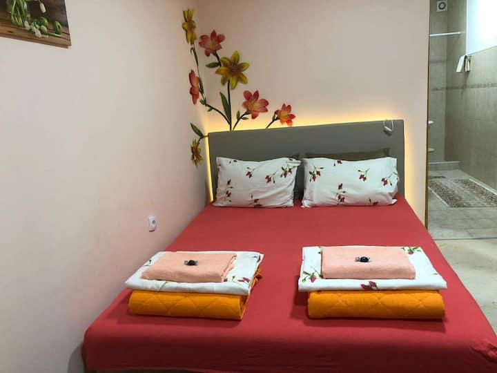 Nela Apartment 3
