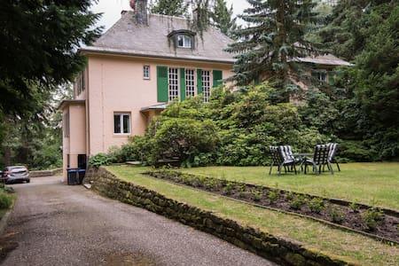 1937er Villa in der Sächsischen Schweiz - Bad Gottleuba-Berggießhübel - Гестхаус
