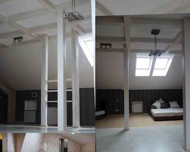 Spacious loft close to the park - Gatchina