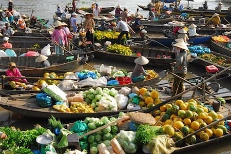 A+ Phong Dien view of the Mekong Delta River