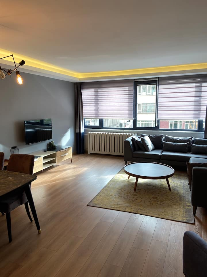 Fully Furnished Luxury House in City Centre-3