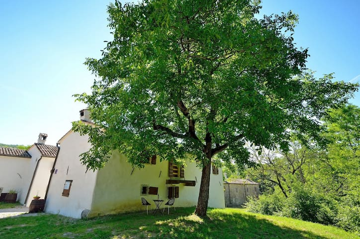 House for 2 persons with pool in Buzet R62648