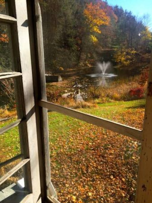 View of pond from Sun Porch
