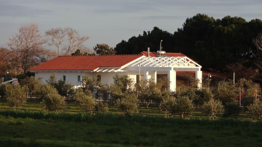 White Villas - Garden Villa - Douneika - Vila