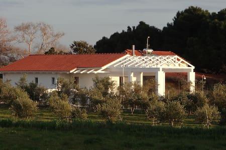 White Villas - Garden Villa - Douneika - Villa
