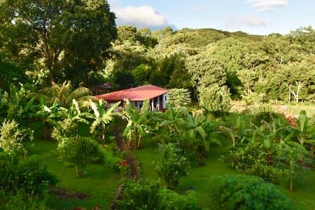 Finca Ometepe - Casita - Whole House