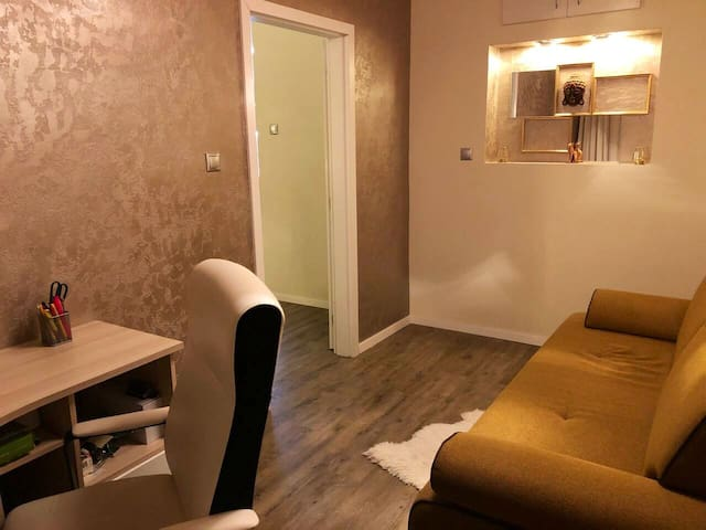 the second separated room with working space and convertible sofa bed