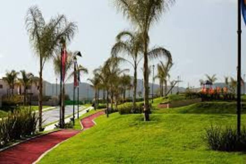 Áreas verdes y pista de jogging.
