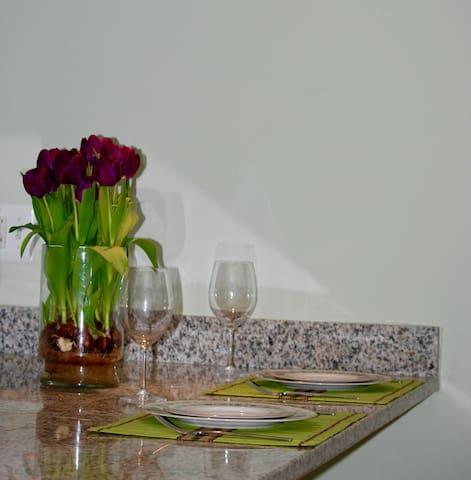 Full 1 BR apartment in English basement - Washington - Daire