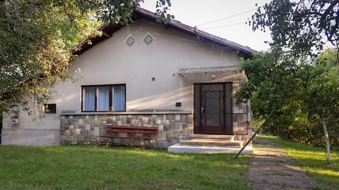 Rural house(Prahova Valley) with orchard and creek