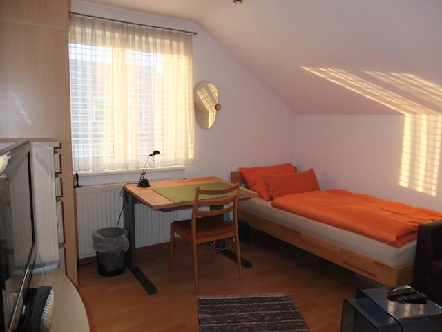 Single Room with fast WIFI and TV - Dornbirn - Pis