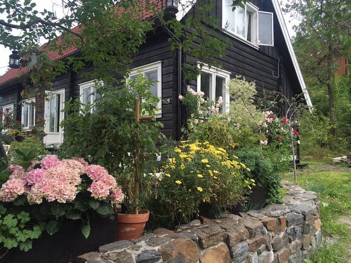 Cozy log house - beautiful sunny and lush garden