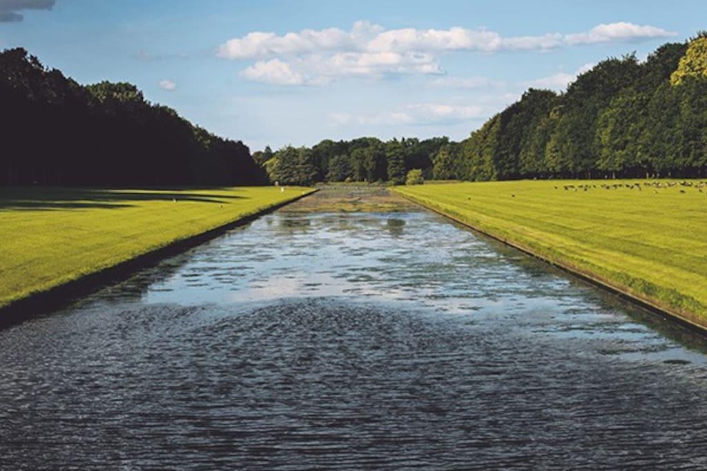 Park of tervuren- 100m