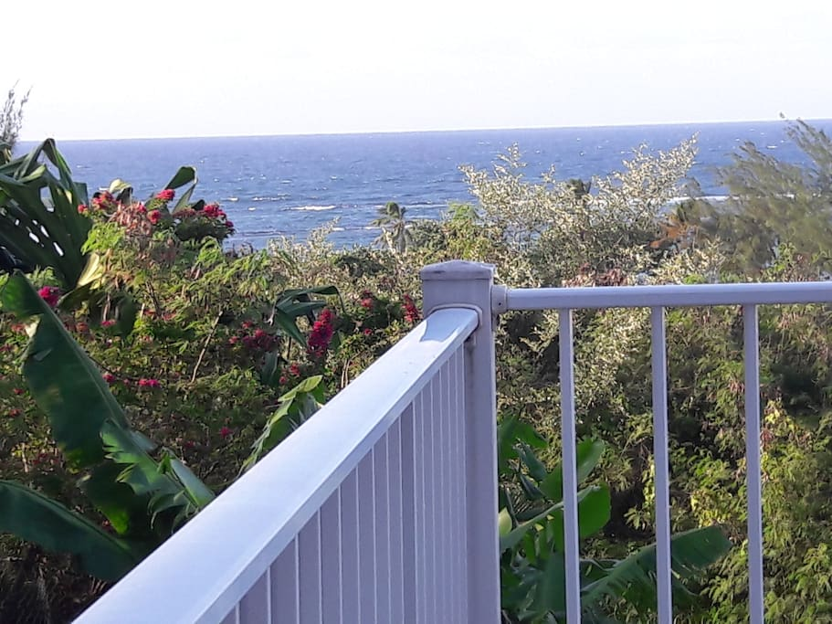 Vue de la terrasse de      l'appartement Atlantique