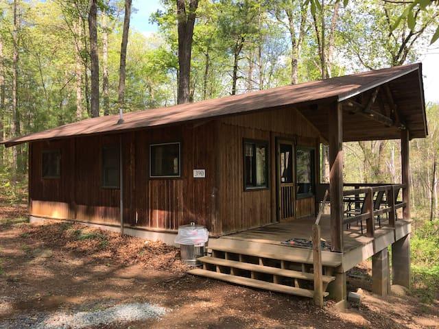 #8 Sassafras 2 BD Cabin Mnt Lake, Hike & Fish
