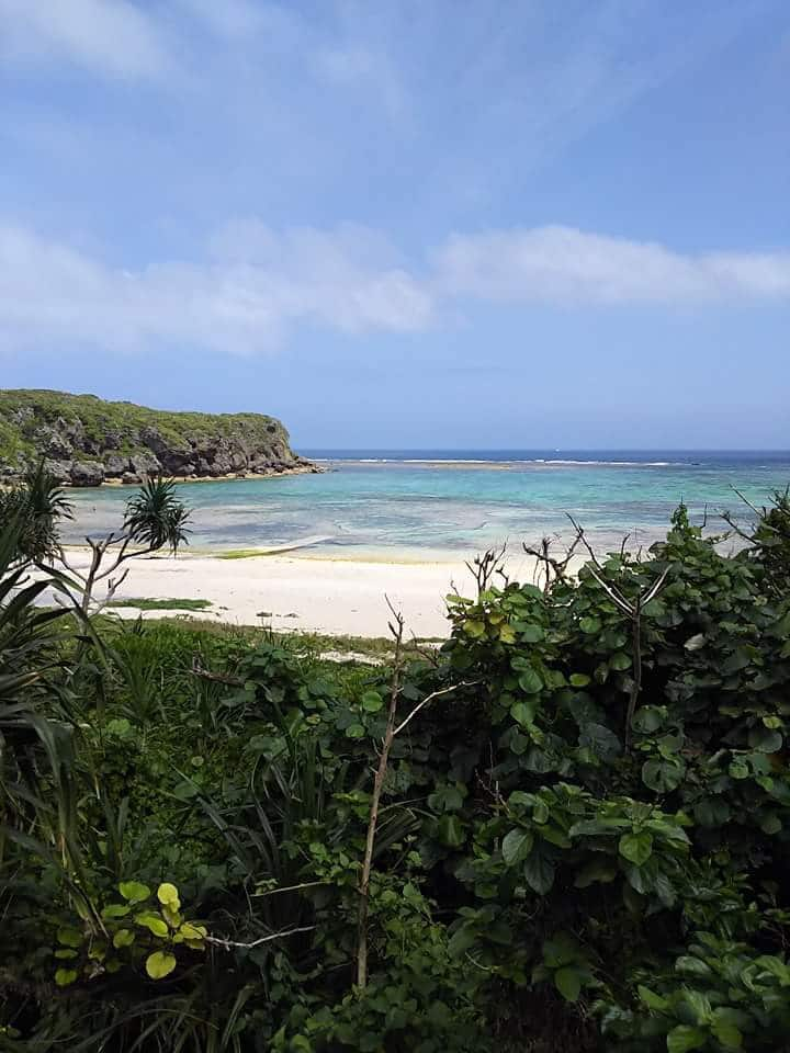 家族、グループにお勧め。無料観光付、写真の秘密のビーチや海ぶどう養殖場等。