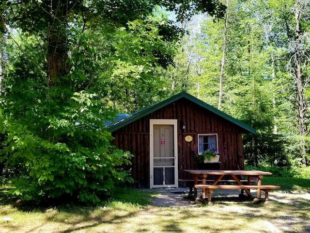Clean, Private Dog Friendly CABIN sleeps 4