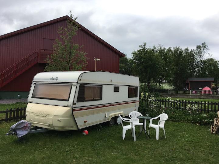 Caravan on backyard.