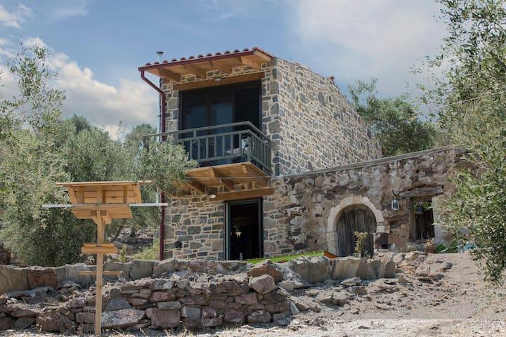 Trahilas House