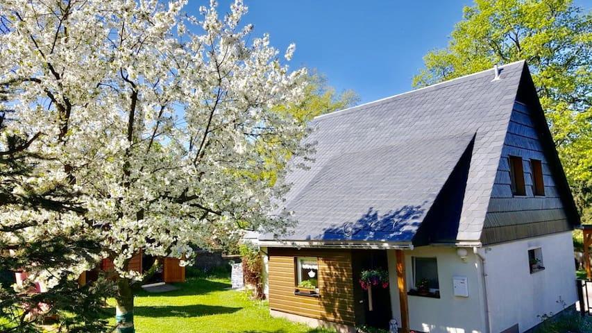 Ferienhaus für die ganze Familie nahe Dresden