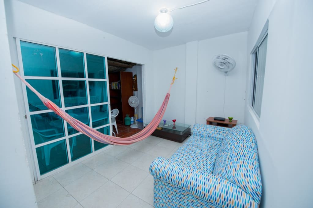 Living room with a hammock