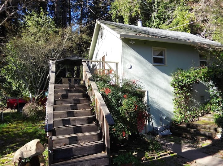 Cool studio with loft in the redwoods( apt c)
