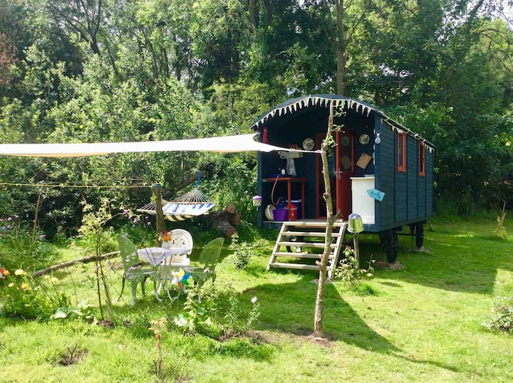 Secluded Glamping in Suffolk, Shepherd Hut Holly