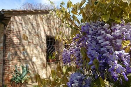 Casina di Aki - Monteriggioni - Villa