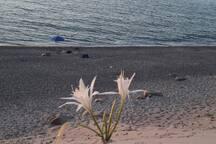 Tramonto alle Montagne di Sabbia