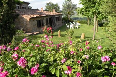 App. La Rosa vista su Montepulciano(La Fraternita) - Montepulciano - Ev