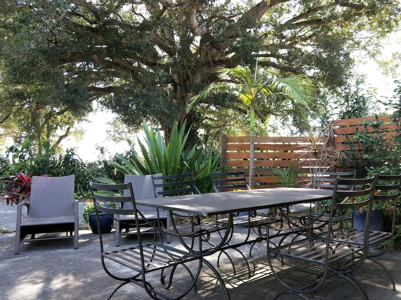 Your lovely outdoor area with out beautiful fig tree it is all the aircon you need on hot summer days