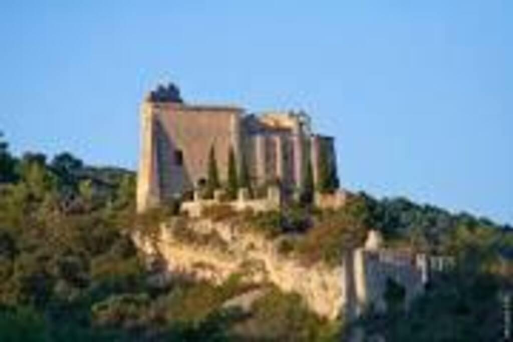 Château de St Saturnin les Apt