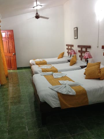 Hotel Don Robert,Bed And Breakfast