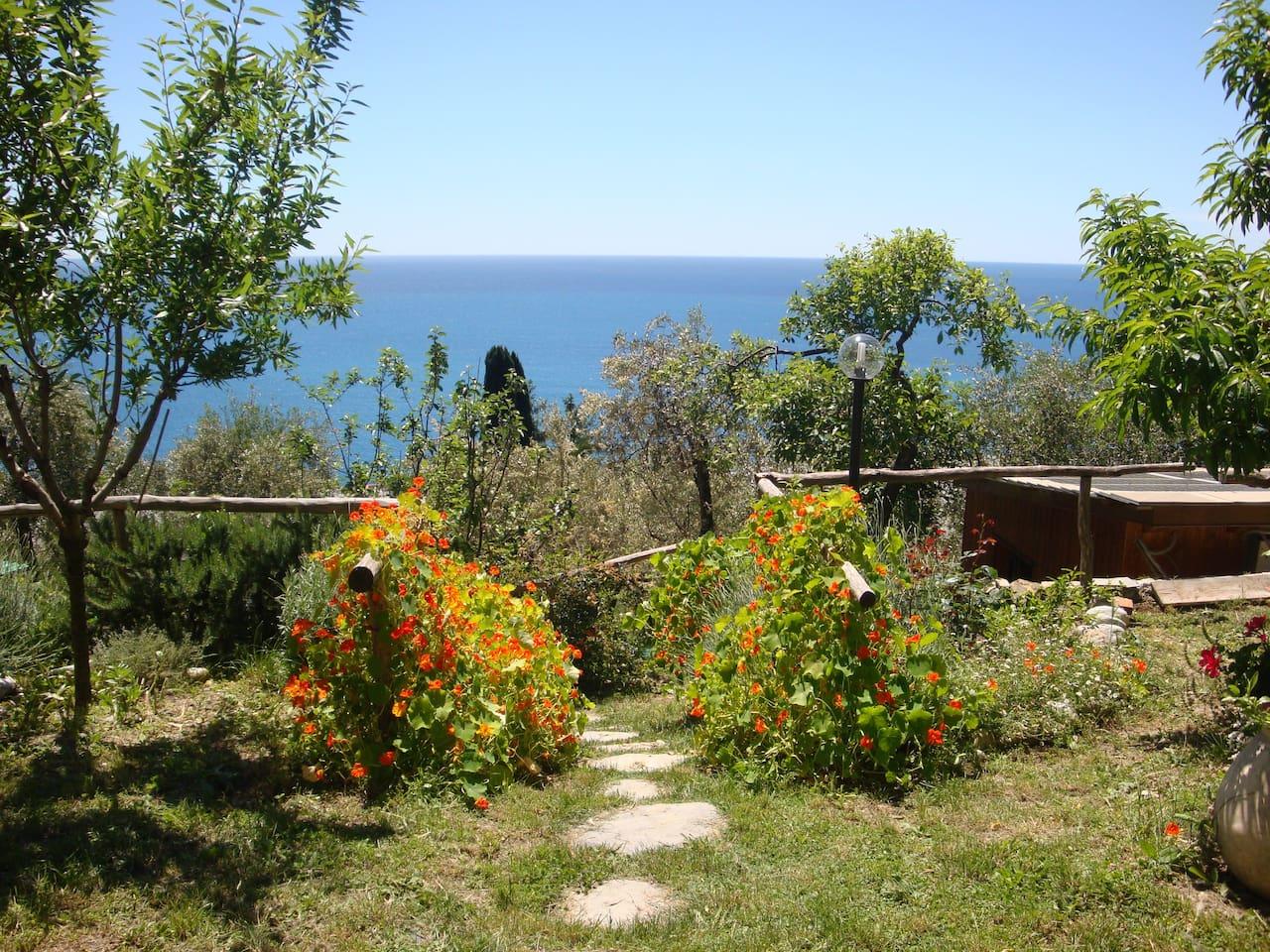 panorama visto dal giardino