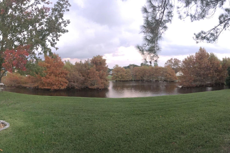 Backyard during fall
