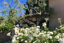 Villa à Saint Tropez - Les Salins