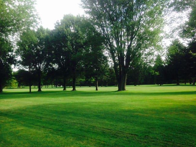 Backyard golf course