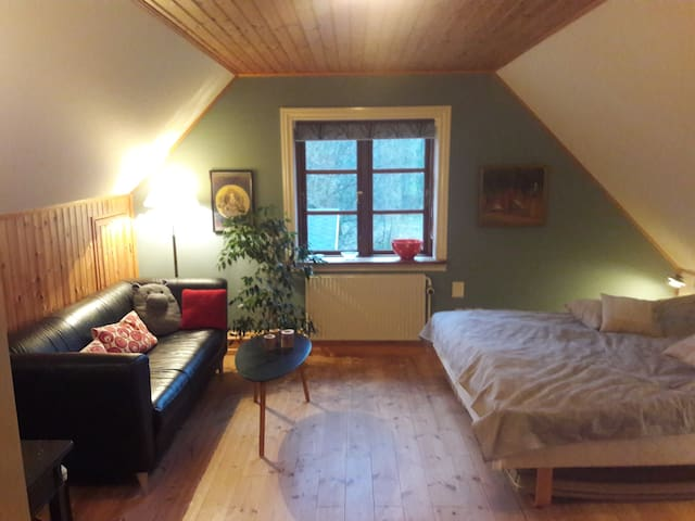"Nice private room in house close to ""Ekkodalen""."